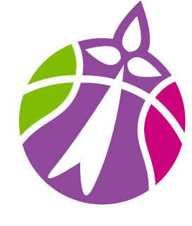 Landerneau Bretagne Basket – LBB