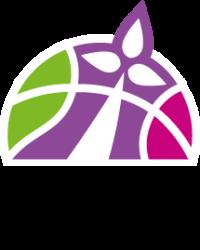 2018-2019-LBB-LFB-nouveau-logo-quadri-web
